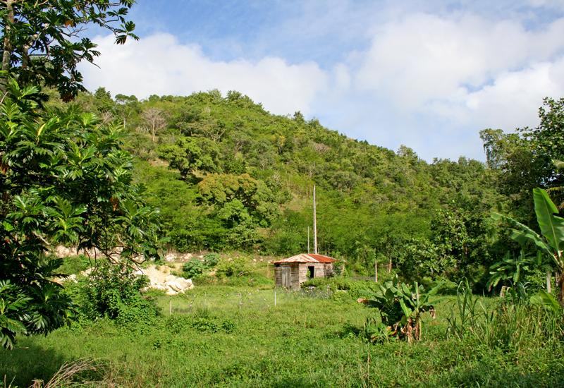 Guadeloupe, Les Abymes, the Grands Fonds at the Papin district