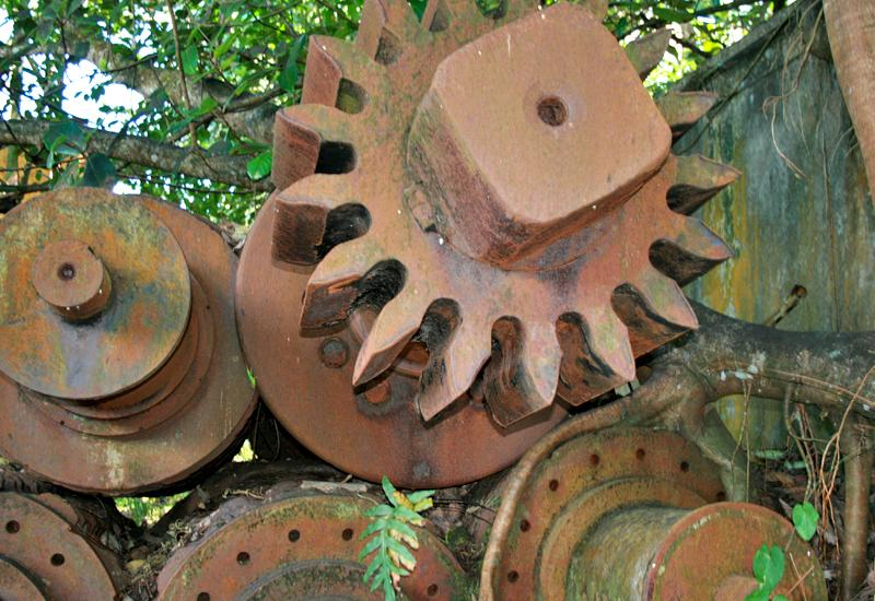 Former factory Grosse Montagne, Lamentin (Guadeloupe): wheels invaded by vegetation
