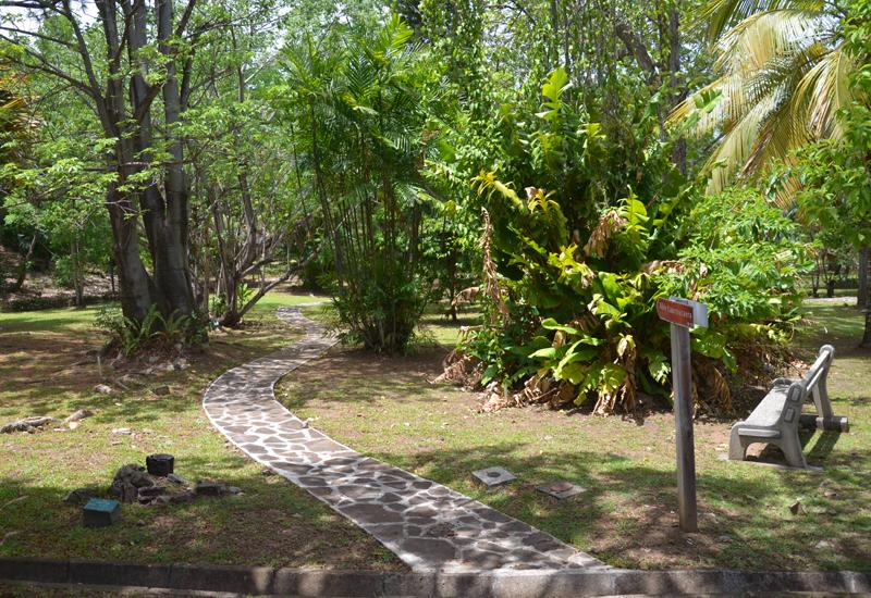 Botanical Garden - Basse-Terre: discovery trail