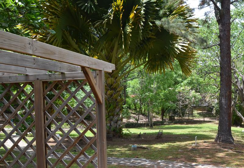 The Botanical Garden of Basse-Terre. Outdoor relaxation area
