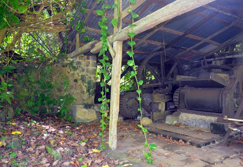 The vestiges of the workshop still preserved, here, the cane mill