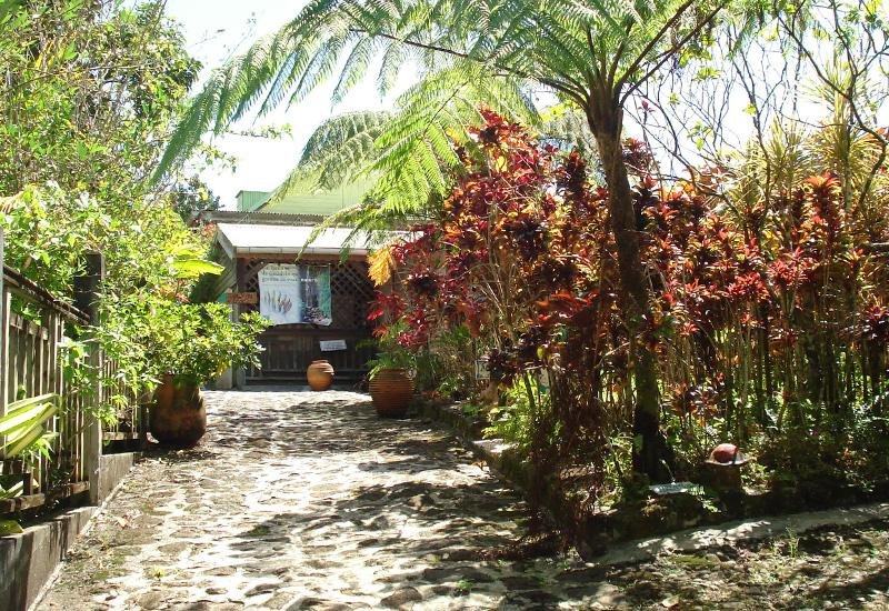Banana House, a must-know place for banana from Guadeloupe