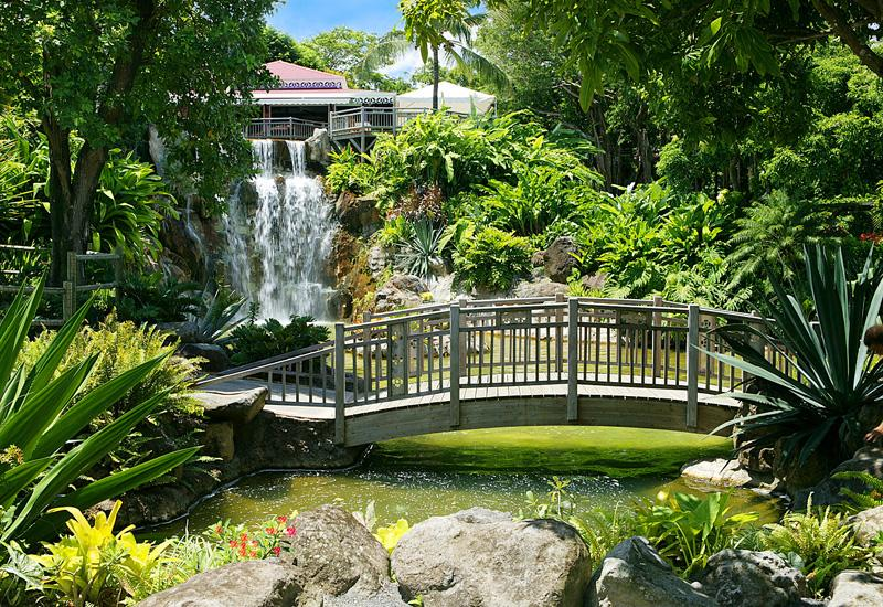 Botanical garden, Deshaies, waterfalls and pools follow one another