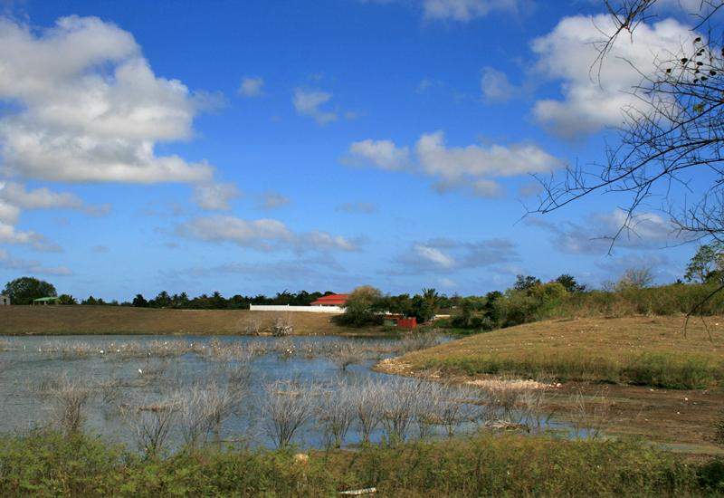 Guadeloupe, Sainte-Anne, les Grands Fonds, pond of Bamboche