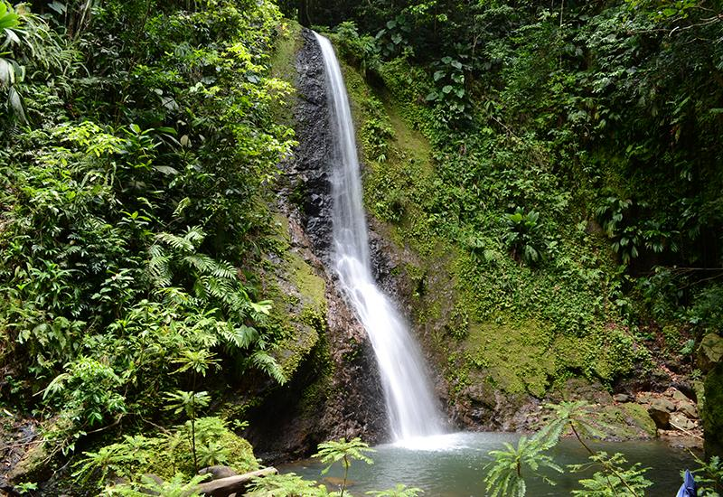 Bois Bananes, Lamentin, a beautiful waterfall of ten meters