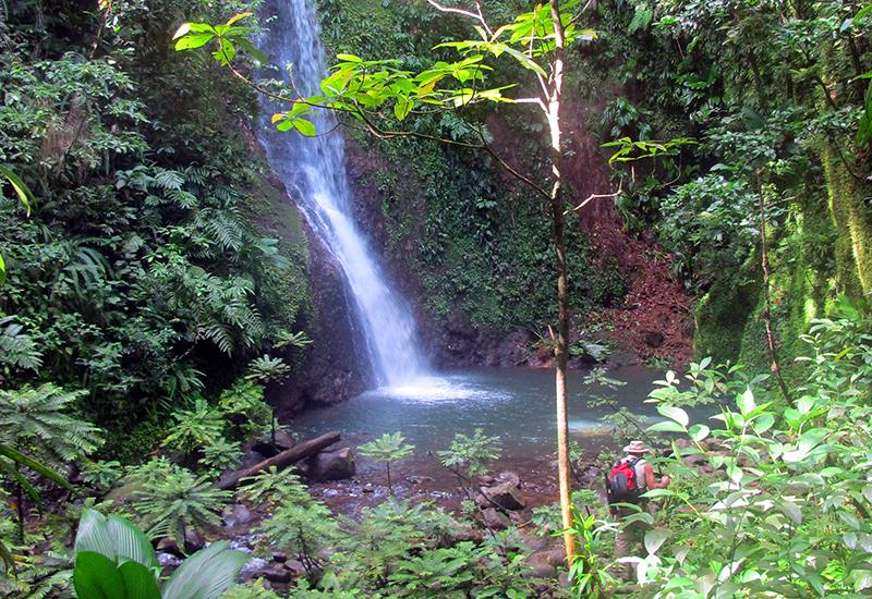 "Guadeloupe, town of Lamentin, Waterfall of ""Bois Bananes"", on the river of the same name"