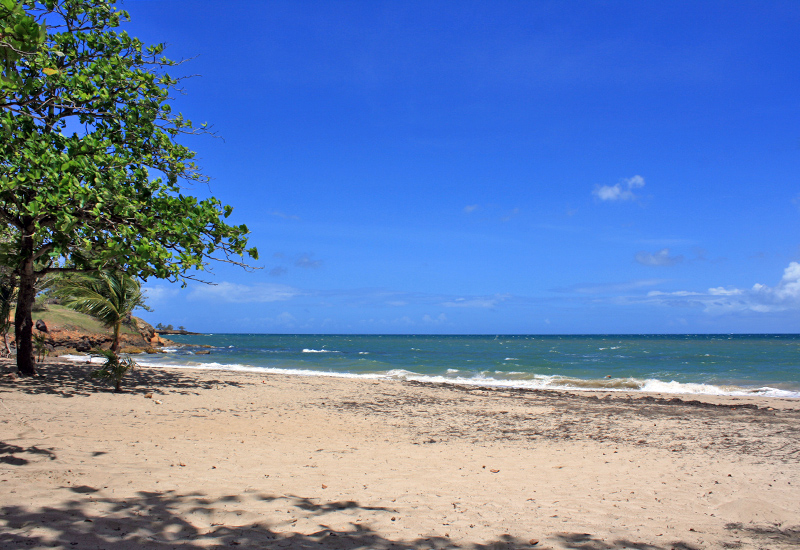 Plage de Mambia, a beautiful little beach of blond sand